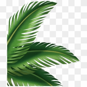 Free Tropical Leaves Png Images Hd Tropical Leaves Png Download Vhv This is a cute origami collection about exotic summertime. tropical leaves png download
