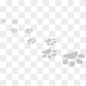 Free Paw Print Png Images Hd Paw Print Png Download Vhv Two black paws , cat dog paw kitten , paws transparent background png clipart. paw print png download